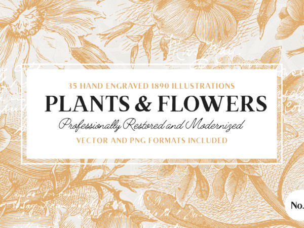 plant-flower-illustrations-vol2-1