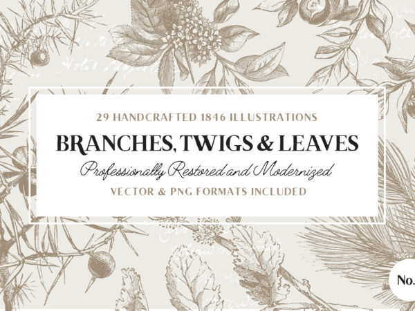 branches-twigs-and-leaves-illustrations-o