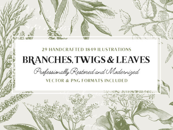 branches-twigs-and-leaves-vol1
