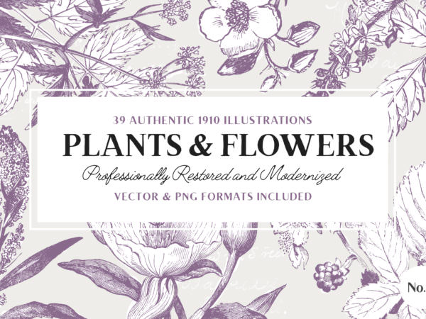 plants-and-flowers-volume-3