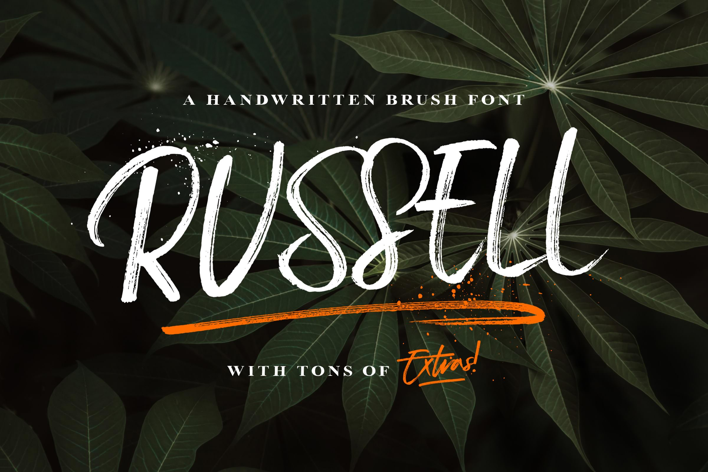 Russell brush script font & extras tom chalky